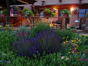 End your Colorado evening surrounded by flowers